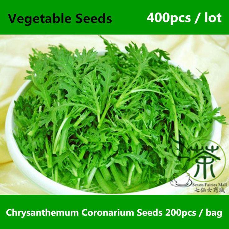 Хризантема согопагшт семена для посадки 400 шт., Корона дейзи съедобные хризантема лист семена овощных культур, Рагу по-китайски зеленый семена