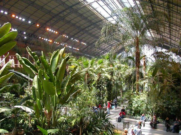Il giardino botanico della stazione di Atocha, Madrid