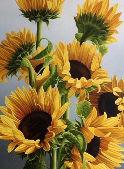 pastel drawn sunflowers flowers | Still Life Oil Paintings ...