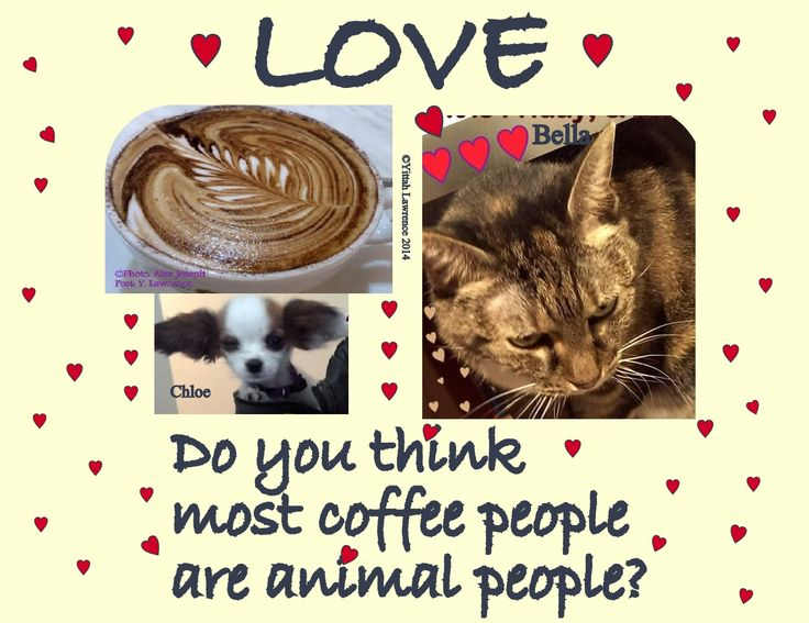 #love #coffee #animals. makes for a soft heart