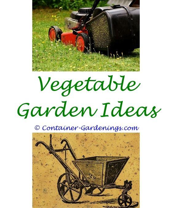 zucchini gardening tips - front garden landscaping ideas no grass.small garden design ideas melbourne garden braai area ideas unique garden ideas pinterest 5062704582