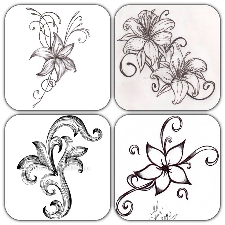 17 Best Ideas About Simple Flower Drawing On Pinterest Rose