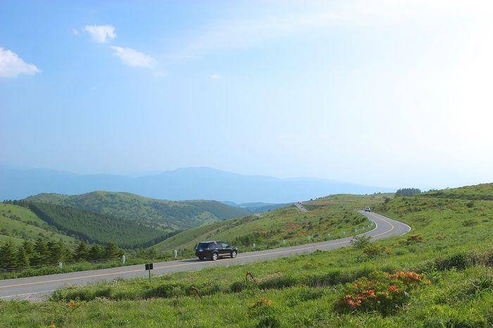 長野県茅野市の御座石神社交差点から美ヶ原高原美術館まで、全長約70kmにも及ぶ高原観光道路「ビーナスライン」。