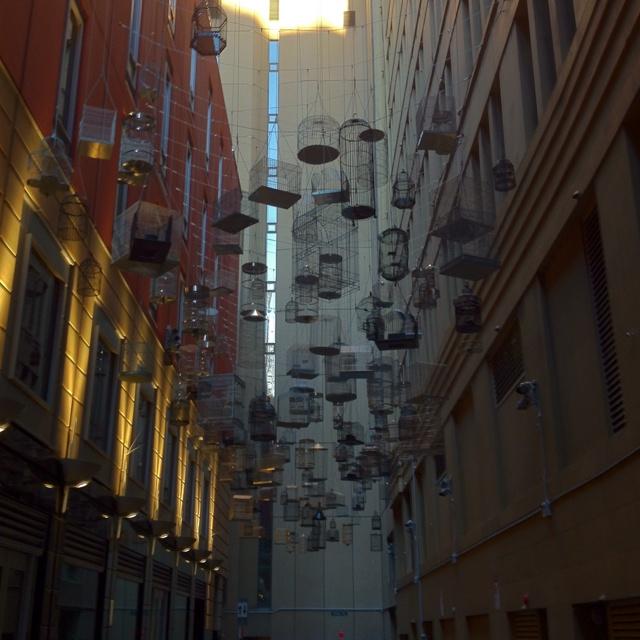 A random Sydney side street