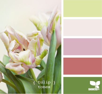 tulip tones: Colors Combos, Colors Combinations, Colors Palettes, Upstairs Bathroom, Offices Colors, Tulip Tones, Colors Swatch, Design Seeds Com, Colors Schemes Pink