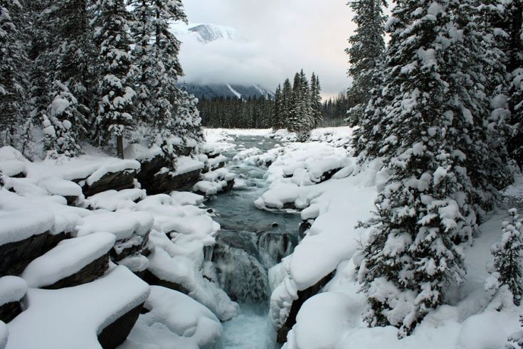 Banff Canmore Lake Louise Calgary Rocky Mountain Wedding: 101 Best Canada, Canmore Images On Pinterest