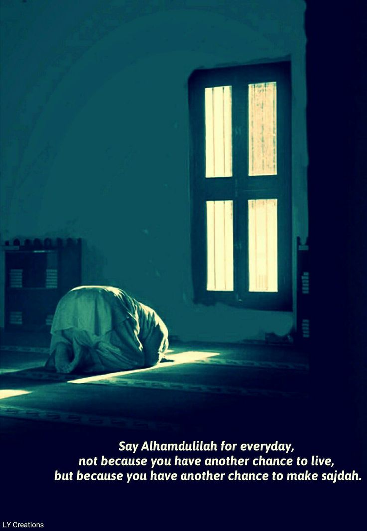 Say Alhamdulillah for everyday