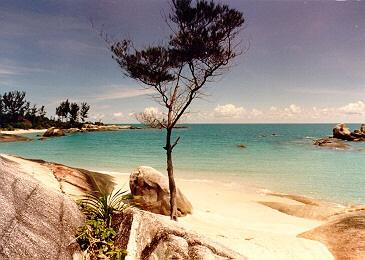 rebu beach (image credit:  lim keng tjoe)