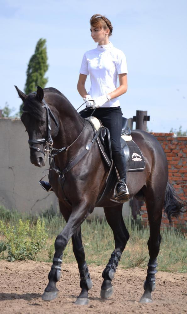 Русская верховая - фотографии - equestrian.ru