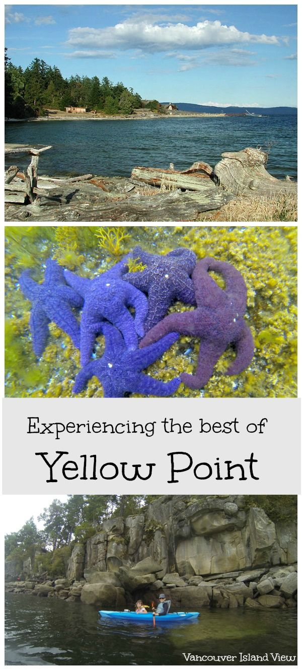 Did you know that Yellow Point, a small community located between Cedar and Ladysmith has some of the best kayaking spots in Nanaimo? Get out and explore Vancouver Island!