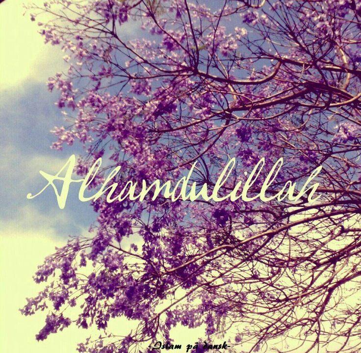 #alhamdulillah #allah #love #lailahailallah