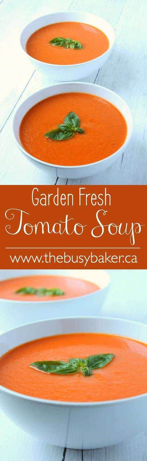 This Garden Fresh Tomato Soup is so easy to make and it's better than anything from a can! Recipe from thebusybaker.ca