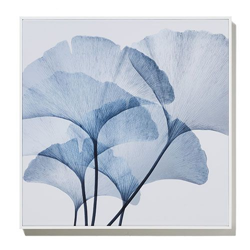 Botanic Gloss Azure Gingko Square Canvas