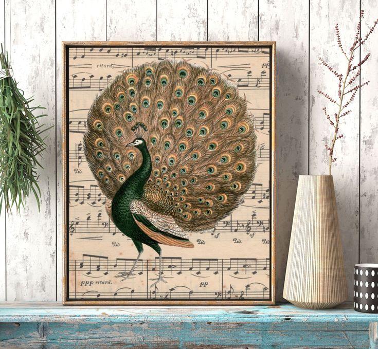 Peacock Art, Old Sheet Music Art Print, Living Room art, Peacock Decor, Sheet Music Wall Art, Gift For Music Lover, Bird Decor, Bedroom Art by twowhiteowls on Etsy https://www.etsy.com/listing/490592213/peacock-art-old-sheet-music-art-print