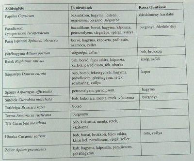 zöldségtársitások2