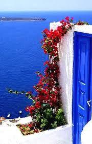 flores ilhas gregas - Pesquisa do Google