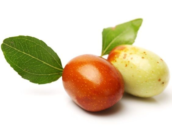The most interesting health benefits of jujube include its ability to treat cancer, improve the health of the skin, cleanse the blood, relieve stress, stimulate restful sleep, strengthen the immune system, protect the liver, aid in weight loss, increase bone mineral density, and detoxify the body.
