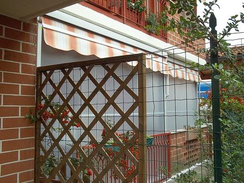 Tenda veranda con cassonetto coprirullo (1)