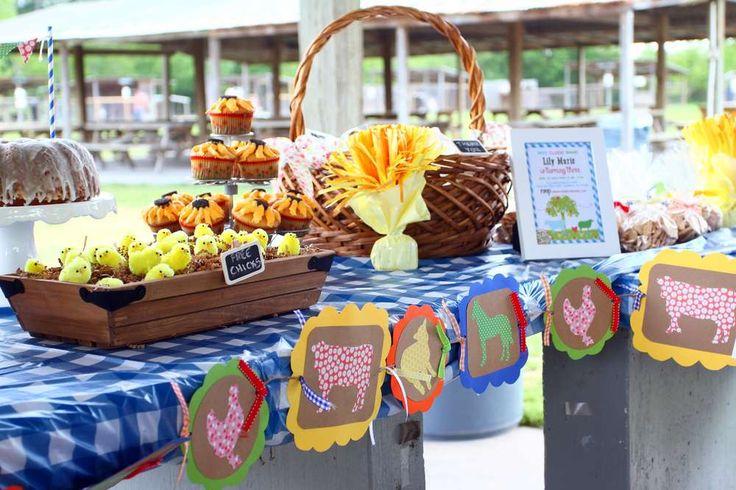 Farm, Barnyard Birthday Party Ideas | Photo 1 of 14 | Catch My Party