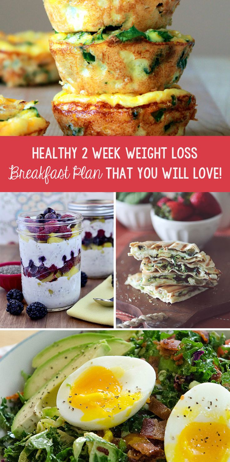 Healthy 2 Week Weight Loss Breakfast Plan That You Will Love! – TrimmedandToned