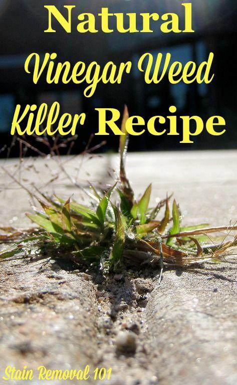 Natural Way To Kill Weeds In Cracks