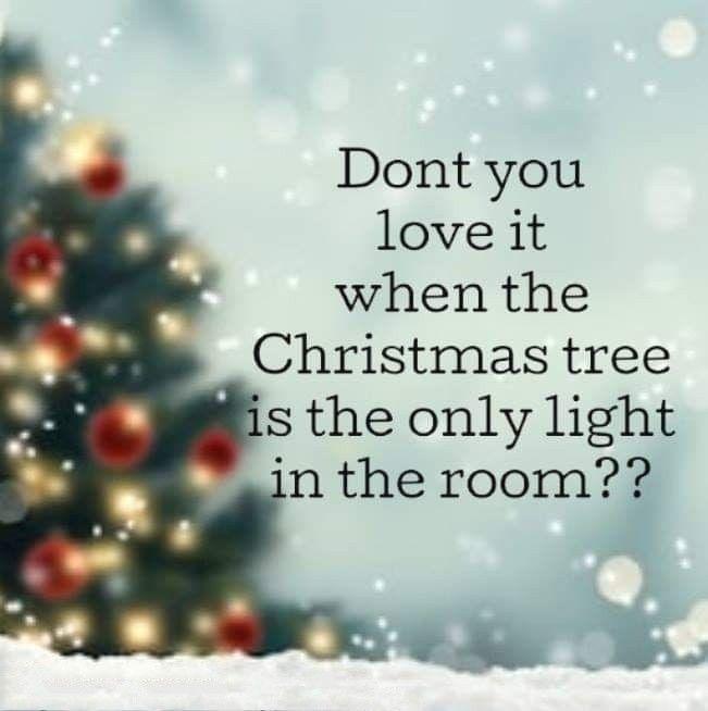 Yes I Do Christmas Lights Quotes Christmas Tree Christmas