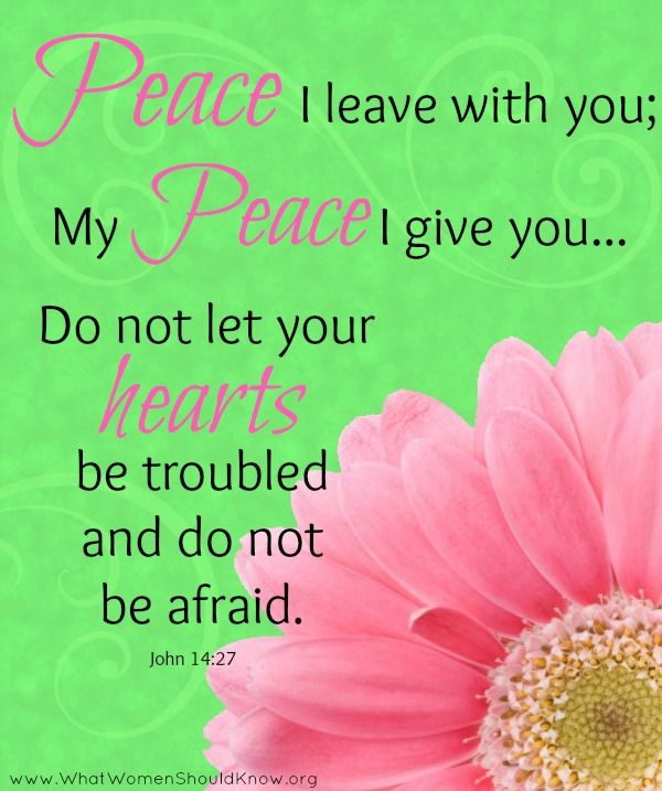 """""""Peace I leave with you; My peace I give you... Do not let your hearts be troubled..."""" John 14:27"""