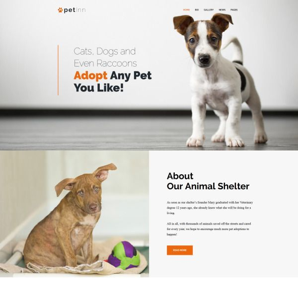 Animal Shelter Website Animal Shelter Website Tierheim Website Site Web Des Refuges Pour An In 2020 Animal Shelter Animal Shelter Design Animal Shelter Adoption