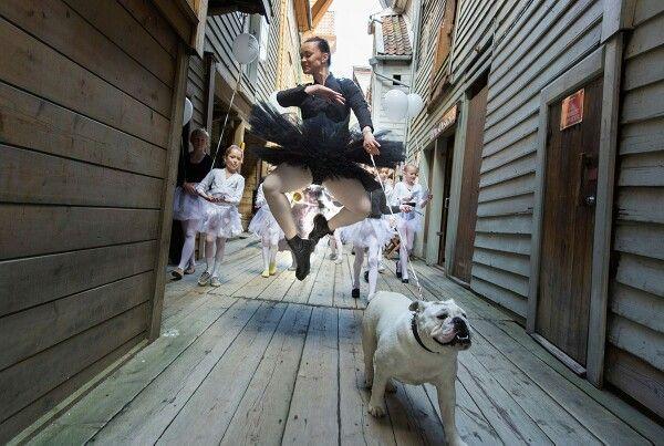 Ballerina Bulldog ♡