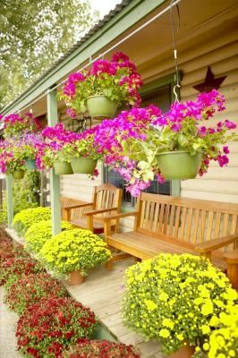 1000 ideas about small front yards on pinterest small - Como decorar mi patio ...