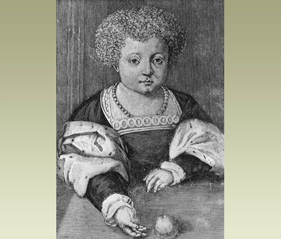 Henry was born in 1491. In English history, the time when he and his family lived is known as the Tudor age. Tudor was Henry's family name. This is Henry around 12 years of age.