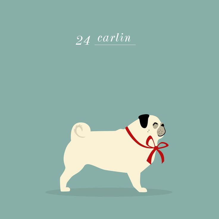 Pug illustration - Charlene Girodet - #carlin #dog
