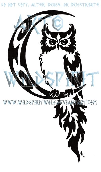 The Owl Tattoo Design: Real Photo Pictures Images and Sketches ...