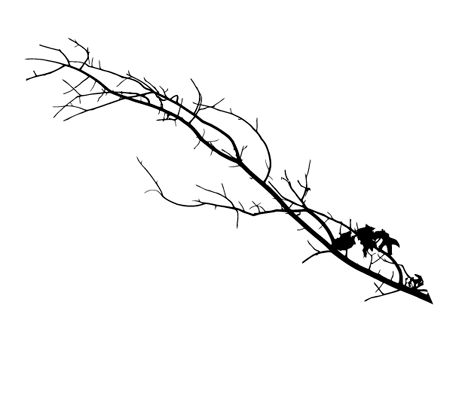 Free Vectors: Tree Silhouettes