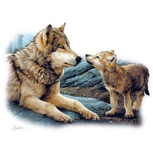 Картинка волк с волчатами для детей, днем рождения девочки