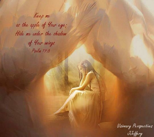 Keep me as the apple of Your eye; hide me in the shadow of Your wings. Psalm 17:8