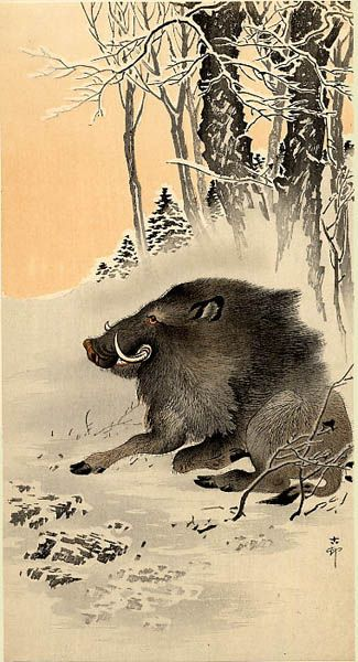 "Wild Boar  by Ohara Koson (1877-1945): Japanese Painter / Printmaker of late 19th early 20th centuries; part of shin-hanga (""new prints"") movement. http://www.hanga.com/viewimage.cfm?ID=3450"