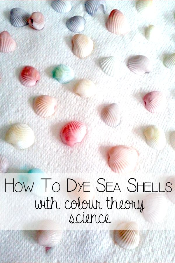 How to dye sea shells with colour theory