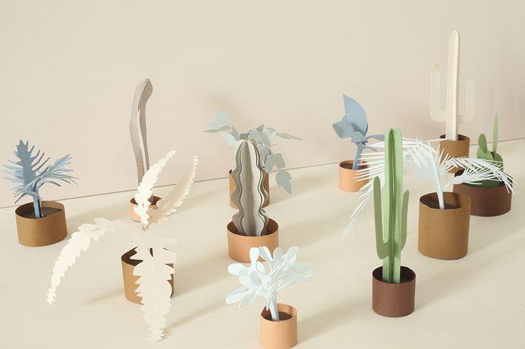 DIY paper greenhouses - Heju