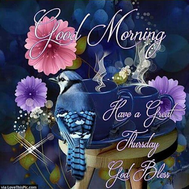 Good Morning Have A Great Thursday God Bless