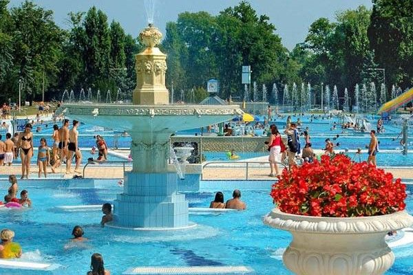 50.000 flowers have been planted in the open-air swimming pools of Budapest