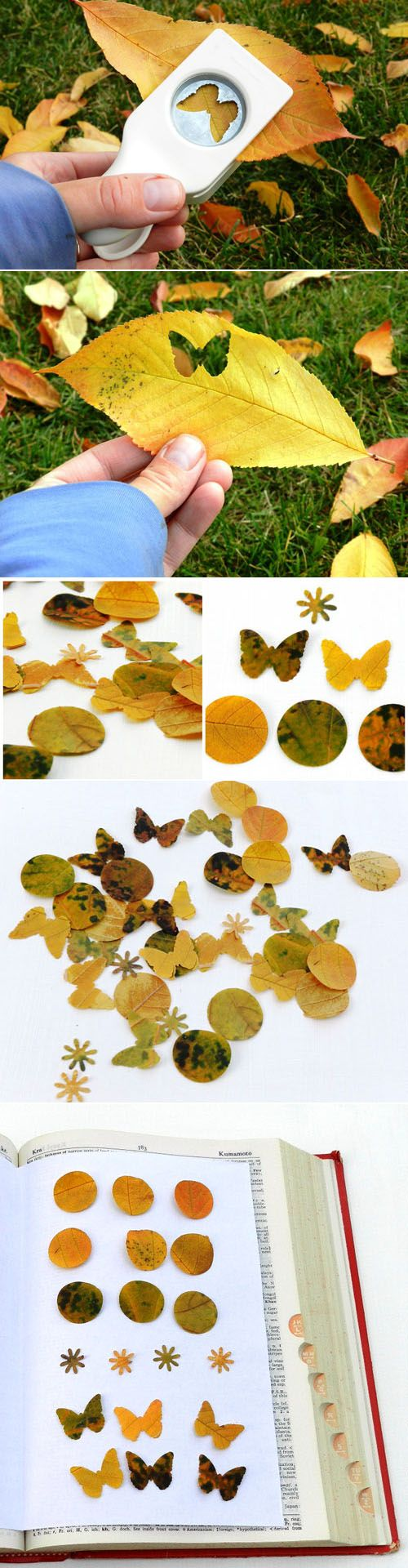 Use decorative paper punch to punch into leaves for fall art projects