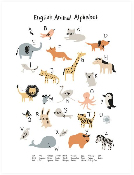 little-cube-poster-animal-alphabet