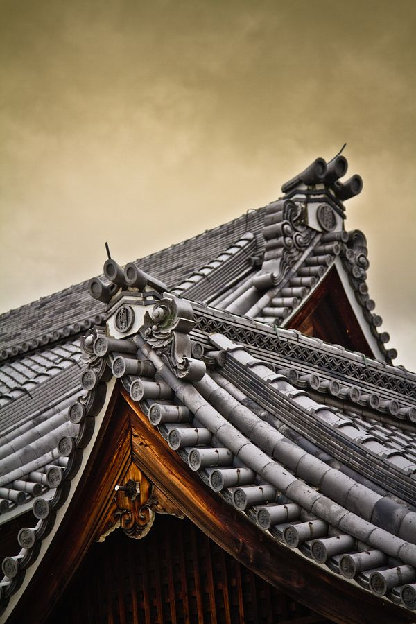The gorgeously detailed architecture of these Japanese rooftops.