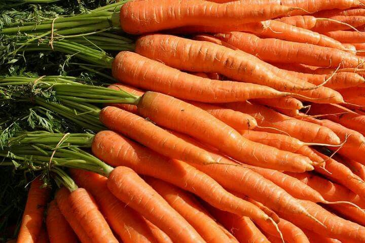 New season carrots now being supplied in our boxes