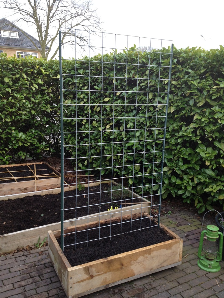 Selfmade Vegetable Trellis Garden On Wheels. On Wheels! Best Compact  Gardening Idea Ever.