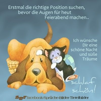 25 melhores ideias sobre gute nacht w nsche no pinterest. Black Bedroom Furniture Sets. Home Design Ideas