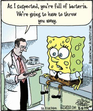 http://thedailyfunnies.files.wordpress.com/2009/05/05-08-09-bizarro.gif?w=450: Poor Spongebob, Funny Pics, Funny Cat, Sponge Bobs, Funny Pictures, Comic Books, Funny Stuff, Funny Quotes, Spongebob Squarepants