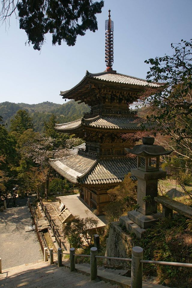 Fascinating architectural style, I think. (Pagodas)