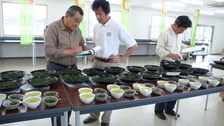 Bidders examine green tea from the Watanabe Estate.